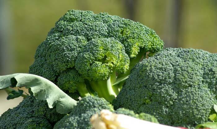 Φαγητά που ενεργοποιούν τον μεταβολισμό σας (4)
