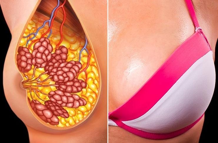 5 εύκολοι φυσικοί τρόποι για πιο σφριγηλό και καλοσχηματισμένο στήθος